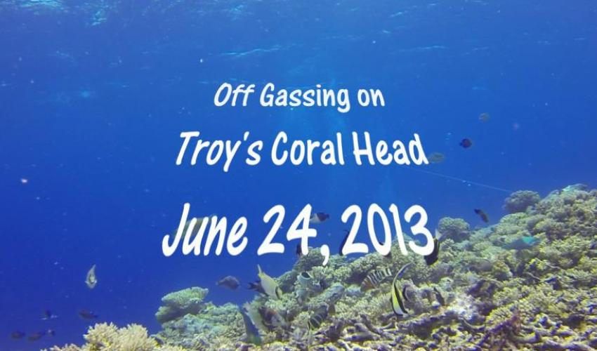Off Gassing Troy's Coral Head June 24, 2013