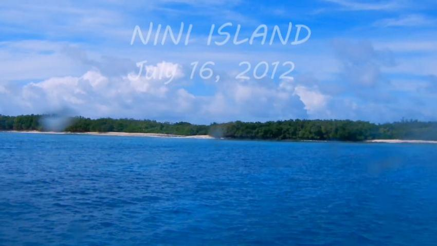 Nini Island: Fish May Safely Graze