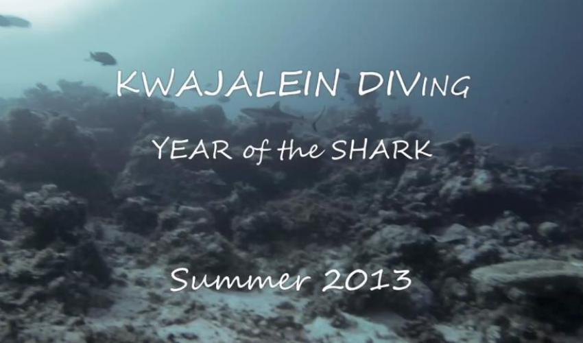 Kwaj Diving 2013: Year of the Shark