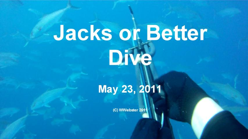 Webster - Jacks or Better Dive