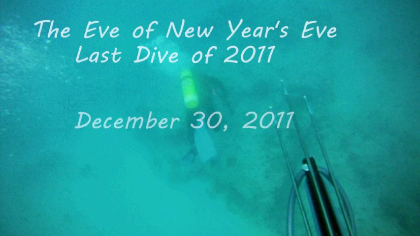 Webster - Spearfishing: The Eve of New Year's Eve