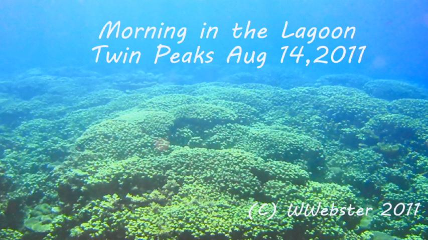 Webster - Twin Peaks 8-14-11