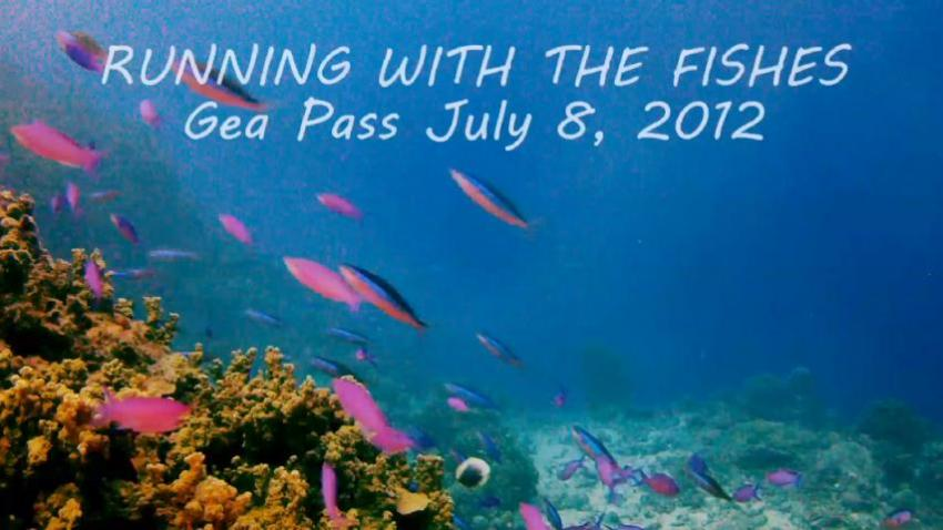 Gea  Pass: Running with the Fishes