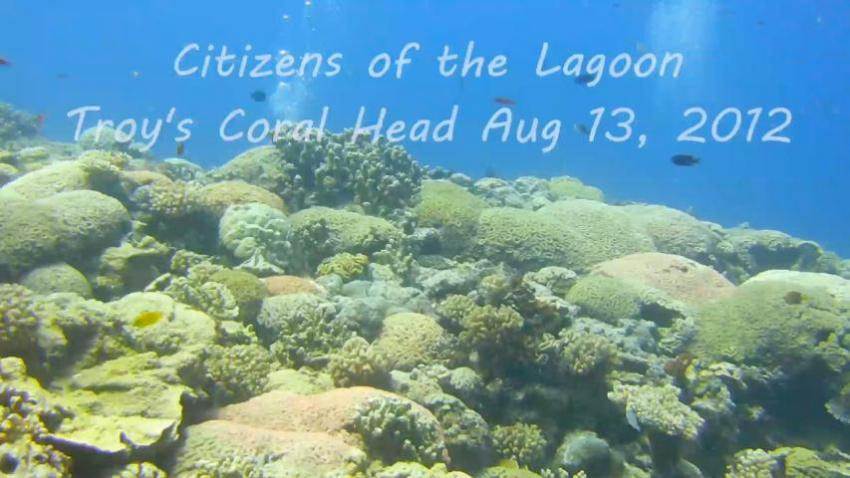 Citizens of Kwajalein Lagoon